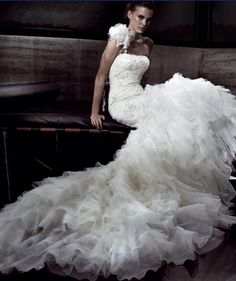 a wedding dress... @Cara K Ozbolt  marry someone super rich so u can have a huge fancy wedding and wear this for your dress. ;)