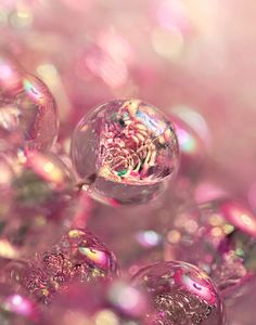 Pink Bubble: place your intention inside the bubble and let your bubble free into the universe stemming from the heart (pink) Pink Bubbles, Blowing Bubbles, Rainbow Bubbles, Soap Bubbles, Pink Love, Pretty In Pink, Fotografia Macro, I Believe In Pink, Dew Drops