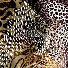 Leopard Skins 2
