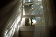 The light of the early morn' slowly rises above the trees and streams through my window's pane. With eyelids closed, I see its shadow; Ever so softly waking me, I turn to look. photo source: Let i...