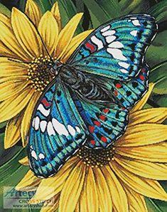 Gaudy Baron Butterfly - cross stitch pattern designed by Tereena Clarke. Category: Flowers.