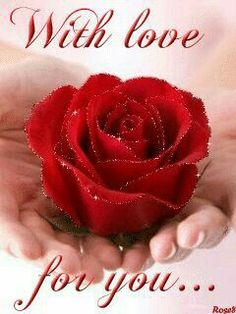 ✿⊱❥ With love for you. Love Heart Images, Love You Images, Beautiful Love, Beautiful Images, Beautiful Flowers, Hearts And Roses, Red Roses, Jesus E Maria, Love You Gif