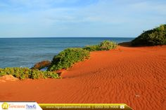 Indian Ocean Coast of Bundala National Park, Sri Lanka  |  #Bundala #National #Park is an internationally important wintering ground for #migratory water #birds in Sri Lanka.  |  Source: https://en.wikipedia.org/wiki/Bundala_National_Park  |  Book Now: https://www.taprobanetravel.co.uk/?utm_source=pinterest&utm_campaign=indian-ocean-coast-of-bundala-national-park-sri-lanka&utm_medium=social&utm_term=sri-lanka  |  #srilanka #taprobanetravel  #bookflights #travel #flights #cheapflights