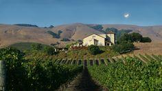 """Saunter to Sonoma"" with Mary Ann Davidson :: URHere Travel by ConciergeQ (photo: Gloria Ferrer Winery) #travel #wine"