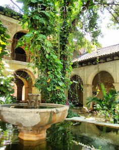 Ex convento de Santo Domingo, Chiapa de Corzo, Chiapas