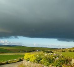 Orkney Brewery seen over our flower border and under a threatening sky. Quoyloo, Orkney. July 2017. Photo by Graham Brown.