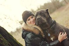Cane Corso and friend.