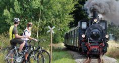 Waldviertler Schmalspurbahn Train, Woodland Forest, Strollers
