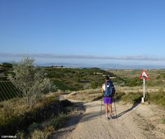 Road to Viana #Camino2015 july McG