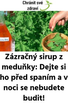 Home Remedies, Food And Drink, Health Fitness, Herbs, Smoothie, Drinks, Cooking, Herbs For Health, Syrup