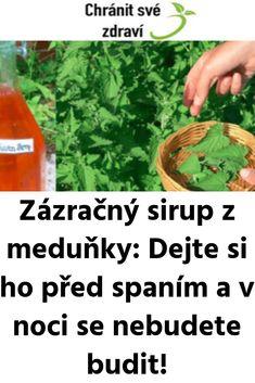 Zázračný sirup z meduňky: Dejte si ho před spaním a v noci se nebudete budit! Home Remedies, Health Fitness, Food And Drink, Herbs, Smoothie, Drinks, Cooking, Garden, Herbs For Health