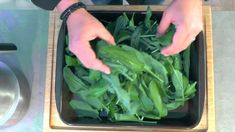 Bärlauchpesto mit Schafskäse - Rezept von Feinkostkugler Celery, Dips, Vegetables, Food, Sheep, Canning, Food Portions, Meal, Sauces