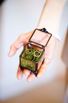Ring bearer pillow alternative: vintage-look glass box filled with grass or other nature.