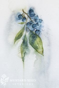 """I haven't had much of a chance to paint recently and I found I was really missing it, so last week, I set aside some time to put brush to paper. I picked blueberries as my subject and started. I got to an """"almost finished"""" place and realized I just hated it! It was too stiff, structured, and boring. It just wanted working. On a whim, I filled the brush with water and smeared it all over the small painting. It looked like self-sabotage for a moment, but the pigments started to run and…"""