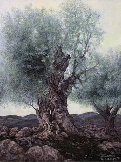 Buy olive trees, a Oil on Canvas by Sergey Levin from Israel. It portrays: Landscape, relevant to: symbol of peace, Israel, history,  Olive trees, landscape Every year I draw pictures with olive trees. I hope that peace will be added to this in our region. Hope dies last.,..