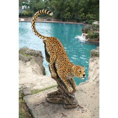 Stalking the Savannah Cheetah Statue by Design Toscano. $299.00. Hand painted. Cast in quality designer resin. Design Toscano exclusive. KY1875 Features: -Cast in quality designer resin.-Hand painted.