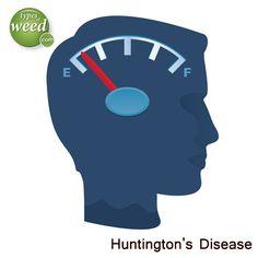 Huntington's Disease and Medical Marijuana