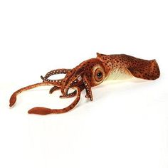 The Realistic Squid Stuffed Animal by Fiesta is a lifelike plush toy that will provide an unlimited amount of creative and educational play time. River Otter, Sea Otter, Bearded Dragon Diet, Plush Animals, Stuffed Animals, Toy Craft, Natural World, Handmade Toys, Party