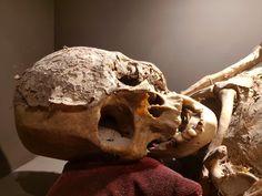 """PORVENIR"" by Daniel Reynoso (Ankhsethamon) Lion Sculpture, Skull, Statue, Art, Art Background, Kunst, Performing Arts, Sculptures, Skulls"