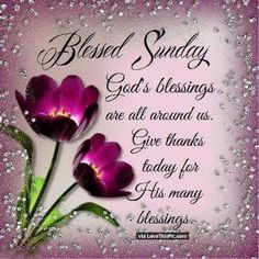 Good Morning sister,God bless you,have a nice day,xxx enjoy your Sunday ❤❤❤☀