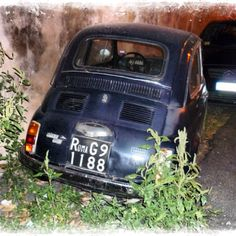 Old Fiat in Roma, Italy