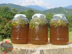 Сурица - необыкновенный напиток, который готовили наши предки!  Самая полезная пища, это естественная пища региона, в котором проживает человек.То же са... - Сад огород - Google+