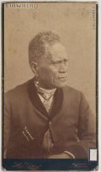 Kingi Tawhiao Portrait Art, Portraits, Maori People, Maori Art, My Heritage, Kiwi, Islands, Photographs, Birds