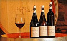 The Grange of Prince Edward Vineyards and Estate Winery – Hillier  Picnic and Winery Tour with Wine Tasting for Two, Four, or Six (Up to 54% Off)