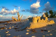 For secluded and untouched beauty, visit Sanibel Island.