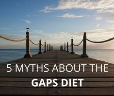 27 diet myths book