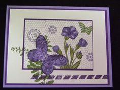 This card has Wisteria Wonder and Elegant Eggplant.  The stamp set is the Butterfly Basics