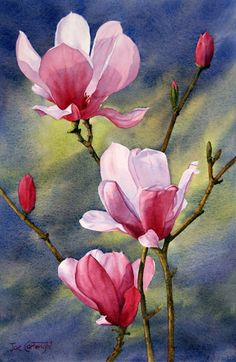 Magnolias, Dark Background, Watercolour painting,Finalist Art of Sydney Awards, 2012 Arte Floral, Watercolor Flowers, Watercolor Art, Art Painting Flowers, Background Watercolour, Background Colour, Watercolour Paintings, Flower Paintings, Background Patterns