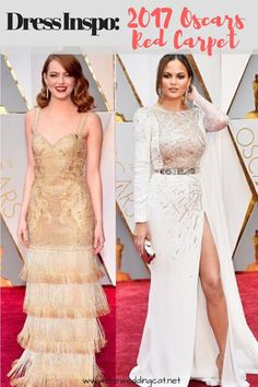 2017 Oscars Red Carpet Inspo