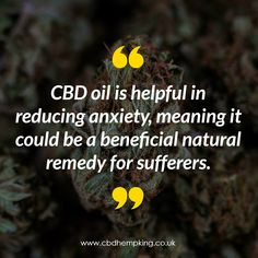 """""""CBD oil is helpful in reducing anxiety, meaning it could be a beneficial natural remedy for sufferers. Hemp, Natural Remedies, Meant To Be, King, Natural Treatments, Natural Medicine"""