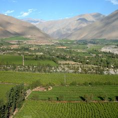 la serena chile | Valle De Elqui (La Serena-Chile) | Flickr - Photo Sharing!