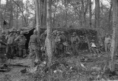 Hurtgen Forest BATTALION AID STATION PERSONNEL READYING CASUALTIES for the next stage of their rearward evacuation