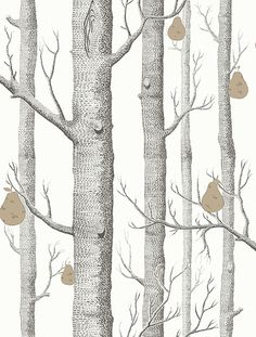 Buy Cole & Son Whimsical Woods & Stars Wallpaper online with Houseology's Price Promise. Full Cole & Son collection with UK & International shipping. Classic Wallpaper, Star Wallpaper, Wood Wallpaper, White Wallpaper, Wallpaper Online, Pattern Wallpaper, Forest Wallpaper, Amazing Wallpaper, Bedroom Wallpaper