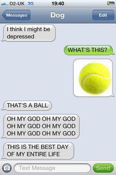 I love texts from a dog.  This one is my favorite, and now I imagine Obi thinking this everytime he sees the ball.