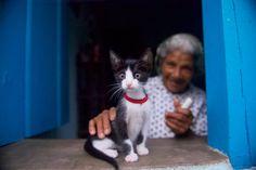 Grandmother and Kitten, Lencois, Brazil 10x7 Fine Art Photo