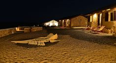 Whale bons at night in Spinguera Ecolodge