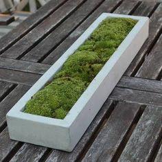 concrete tray - Google Search