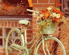 green polka-dot bike and fall flowers