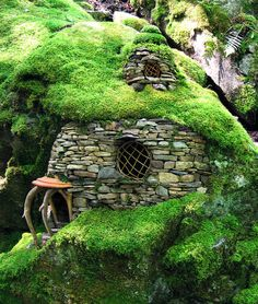 Emerald Moss House from Green Spirit Arts. NYTimes fairy houses article - Leave Your Wings at the Door