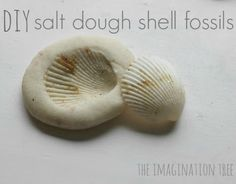 Cheap Summer Activities For Kids: The Imagination Tree: Shell Imprints in Salt Dough. easy cheap recipe for salt. Beach Crafts, Summer Crafts, Summer Fun, Crafts For Kids, Arts And Crafts, Ocean Crafts, Summer School, Science Activities, Summer Activities