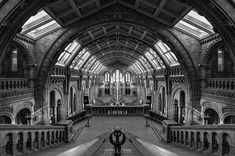 Natural History Museum 6 - the Natural History Museum in London, England Natural History Museum, London England, Monochrome, Cathedral, Louvre, Architecture, Building, Nature, Travel