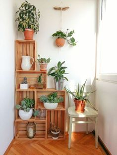 Crates in my kitchen corner. Crates as plant stands. Crate construct… Crates in my kitchen corner. Crates as plant stands. Wood Crate Diy, Wood Crates, Wood Crate Shelves, Ikea Crates, Wooden Crates With Plants, Crate Decor, Crate Bookshelf, Pallet Shelves, Uses For Wooden Crates