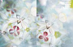 http://www.graphicthoughtfacility.com/frieze-art-fair-2009-campaign-campaign/