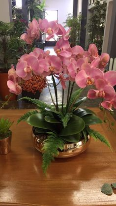 Real Touch Phalaenopsis Orchids & Succulents in Wood Bowl Tropical Flower Arrangements, Orchid Arrangements, Artificial Flower Arrangements, Beautiful Flower Arrangements, Exotic Flowers, Tropical Flowers, Beautiful Flowers, Orchids Garden, Orchid Plants