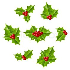Stock vector of 'Set of Christmas holly leaves'