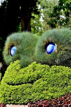 Amazing French Sculptor Brings Animals to Life Using Nothing but Plants! (PHOTOS)
